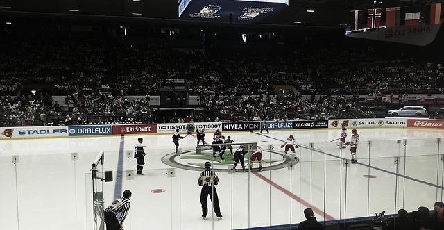 zápas hokeje